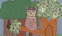 owliewhoooot